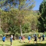 Rugby Rugby 2014