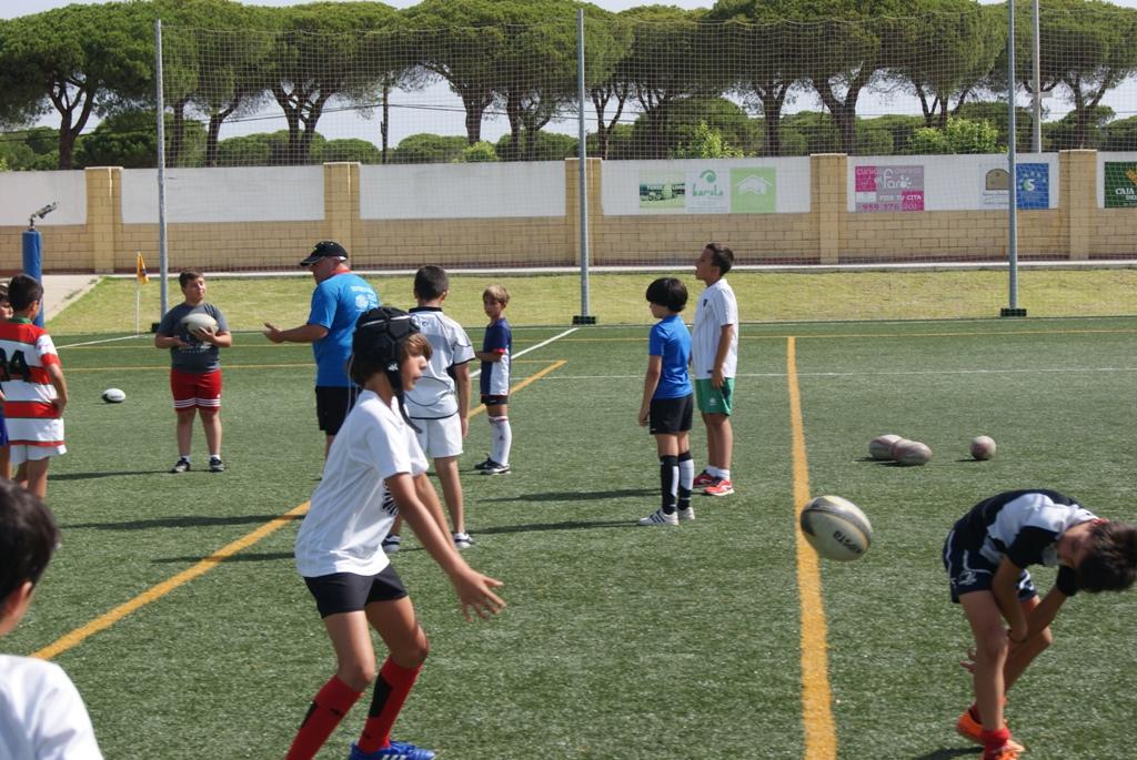 Entrenamiento rugby Césped